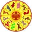 Восточный календарь, символы года.