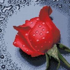 DF062 Роза красная. Набор для алмазной выкладки камнями. Княгиня Ольга