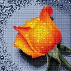 DF064 Роза оранжевая. Набор для алмазной выкладки камнями. Княгиня Ольга