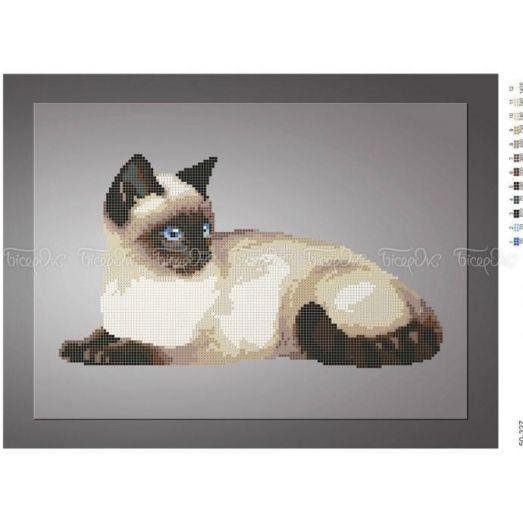 50-327 (30*40) Сиамский кот. Схема для вышивки бисером Бисерок