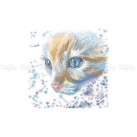 50-349 (30*40) Акварельный кот. Схема для вышивки бисером. Бисерок