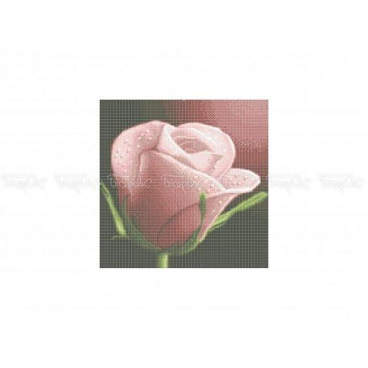 30-335 (30*40) Нежная роза. Схема для вышивки бисером Бисерок