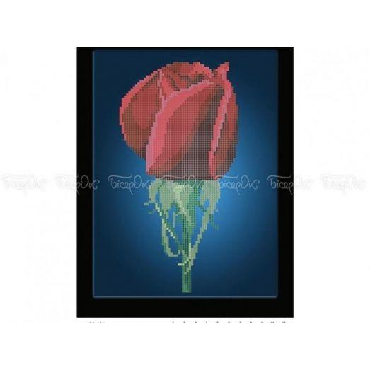 30-401 (20*25) Цветение розы. Схема для вышивки бисером Бисерок