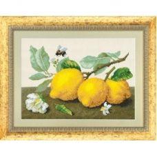 М-0104 Лимонная сиеста. Набор для вышивки в смешанной технике ТМ Чаривна Мить