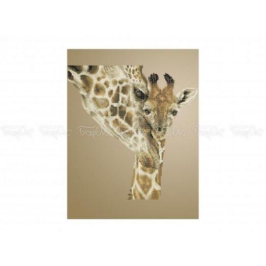 50-332 (30*40) Жирафы. Схема для вышивки бисером Бисерок
