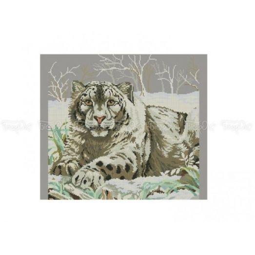 50-203 (40*60) Белый тигр. Схема для вышивки бисером Бисерок