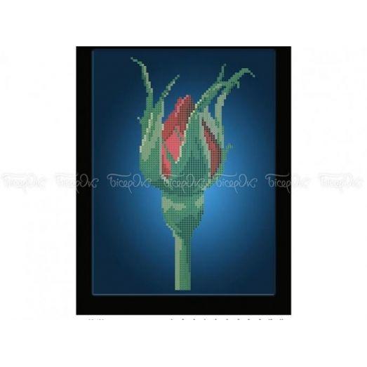 30-400 (20*25) Цветение розы. Схема для вышивки бисером Бисерок