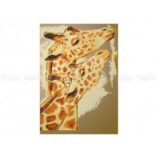 50-318 (30*40) Жирафы. Схема для вышивки бисером Бисерок