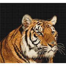 G334 Тигр. Набор для вышивки нитками Luca-s