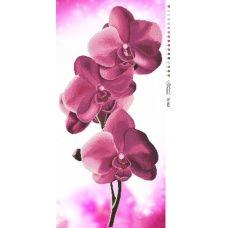 ТК-003 Орхидея. Схема для вышивки бисером. Барвиста Вишиванка