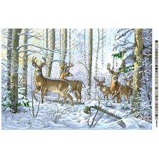 А2-16-005 Олени в зимнем лесу. Канва для вышивки нитками Вышиванка