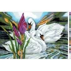 А3-14-017 Лебединая верность. Канва для вышивки нитками Вышиванка