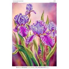 БА2-040 Романтичные ирисы. Схема для вышивки бисером Вышиванка
