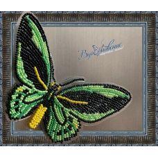 BGP-008 Набор для вышивки Бабочка - Птицекрыл Приам. ТМ Вдохновение