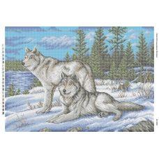 БС-2028 Волки. Схема для вышивки бисером. Сяйво БСР