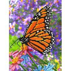 F-047(А4) Бабочка. Схема для вышивки бисером СвитАрт