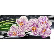 F-049 Орхидея. Схема для вышивки бисером СвитАрт