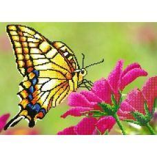 FV-127 (А3) Бабочка на цветке. Схема для вышивки бисером СвитАрт