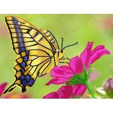 FV-127a(А4) Бабочка на цветке. Схема для вышивки бисером. Свит Арт
