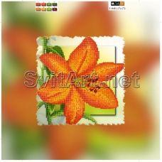 F-048(21*21) ХОЛСТ. Цветок. Схема для вышивки бисером СвитАрт