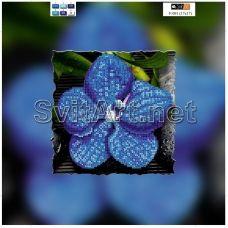 F-091(21*21) ХОЛСТ. Синий цветок. Схема для вышивки бисером СвитАрт