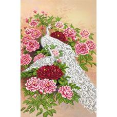 SI-684 (А2) Павлин в розах. Схема для вышивки бисером СвитАрт